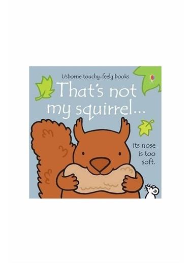 The Usborne The Usborne That's Not My Squirrel Beyaz